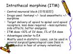 intrathecal morphine itm