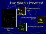 black holes are everywhere