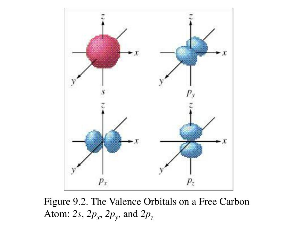 Figure 9.2. The Valence Orbitals on a Free Carbon Atom: