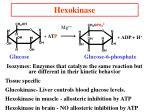 hexokinase