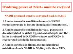 oxidizing power of nad must be recycled