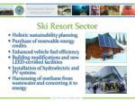 ski resort sector