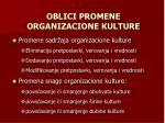 oblici promene organizacione kulture