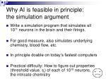 why ai is feasible in principle the simulation argument
