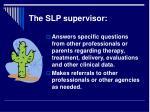 the slp supervisor14