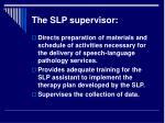 the slp supervisor15