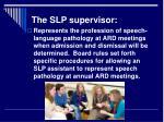 the slp supervisor17