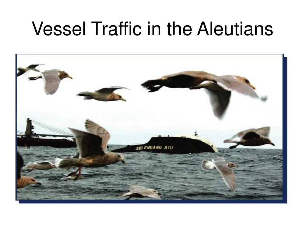 vessel traffic in the aleutians l.