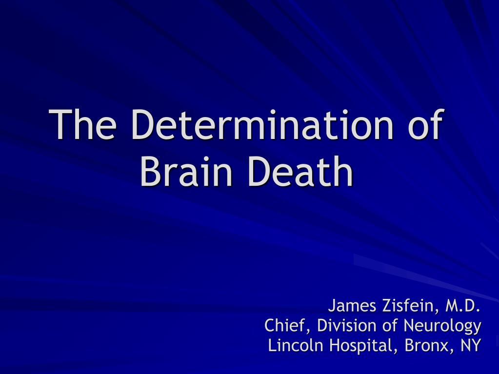 the determination of brain death l.