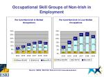 occupational skill groups of non irish in employment7
