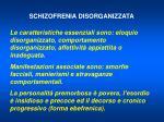 schizofrenia disorganizzata