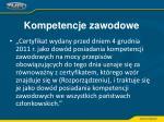 kompetencje zawodowe18