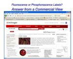 fluorescence or phosphorescence labels answer from a commercial view