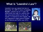 what is leandra s law