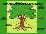 budowa drzewa decyzyjnego