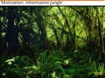 motivation information jungle