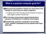 what is a quantum computer good for