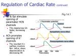 regulation of cardiac rate continued