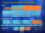 team foundation extensibility