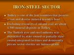 iron steel sector