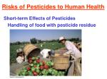 risks of pesticides to human health