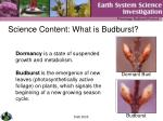 science content what is budburst