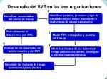 desarrollo del sve en las tres organizaciones