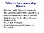 palliative care leadership centers13