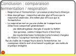 conclusion comparaison fermentation respiration