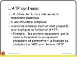 l atp synthase