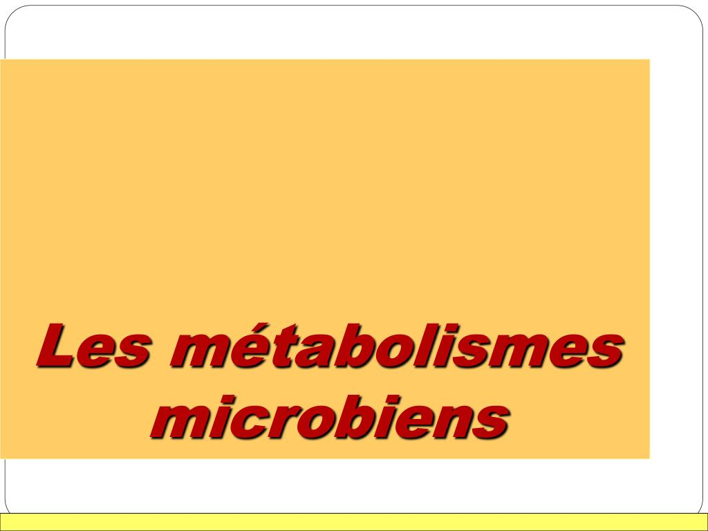 les m tabolismes microbiens l.