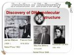 discovery of dna molecular structure