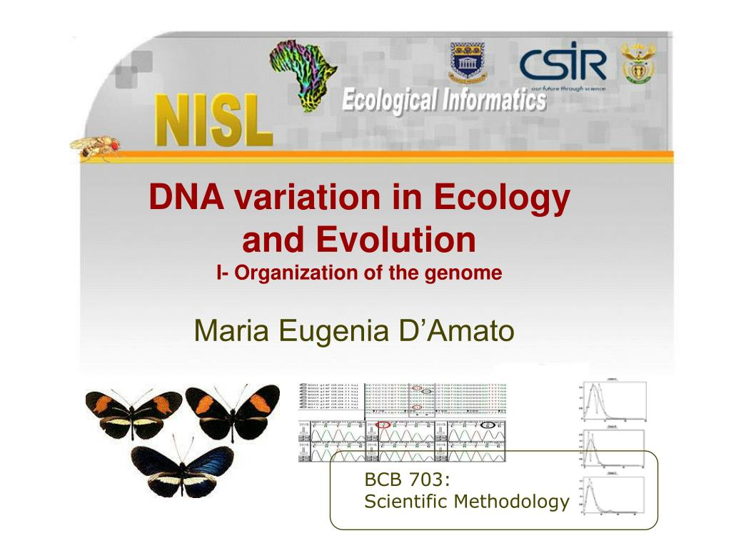 dna variation in ecology and evolution i organization of the genome l.
