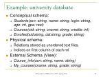 example university database