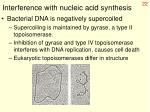 interference with nucleic acid synthesis