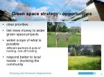 green space strategy opportunities