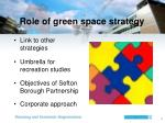 role of green space strategy