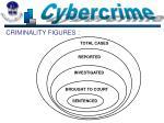 criminality figures