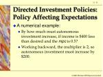 directed investment policies policy affecting expectations31