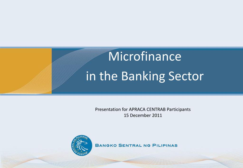 microfinance in the banking sector l.