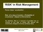 risk in risk management