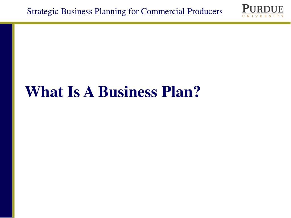 what is a business plan l.
