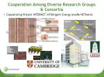 cooperation among diverse research groups consortia