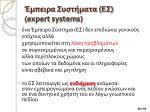 e expert system s