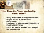 how does the team leadership model work