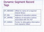 dynamic segment record tags