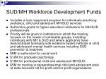 sud mh workforce development funds