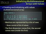 initializing multidimensional arrays with values