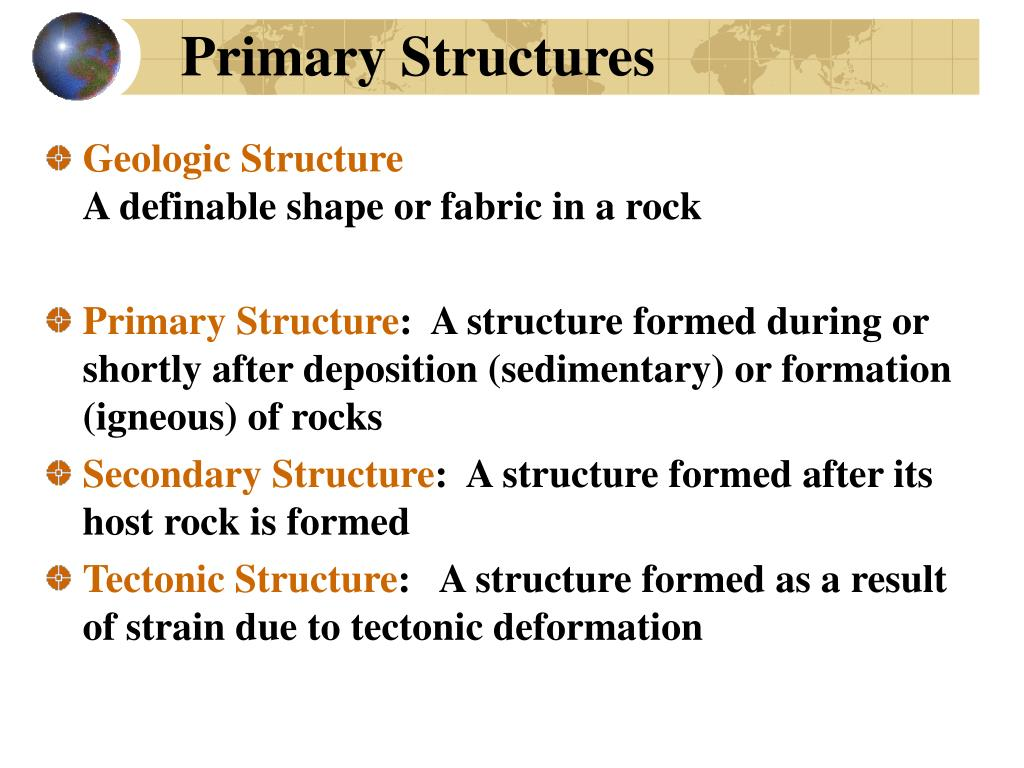primary structures l.