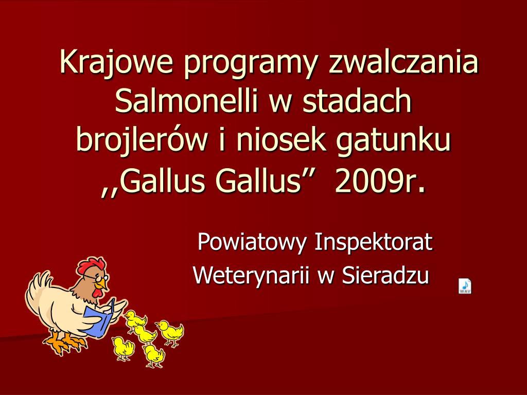 krajowe programy zwalczania salmonelli w stadach brojler w i niosek gatunku gallus gallus 2009r l.